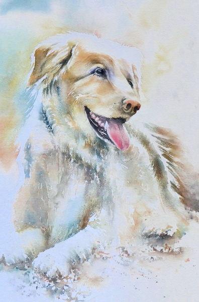 Hund, Aquarellmalerei, Souldog, Tiere, Aquarell,