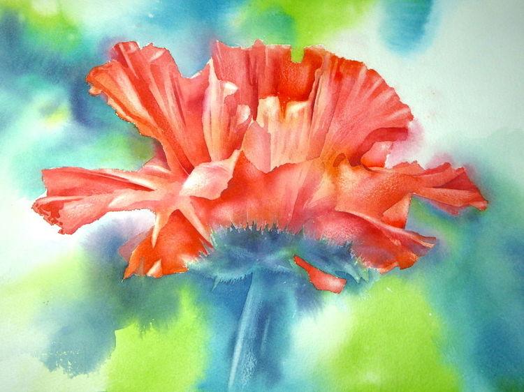 Aquarellmalerei, Mohn, Mohntag, Blumen, Mohnblumen, Aquarell