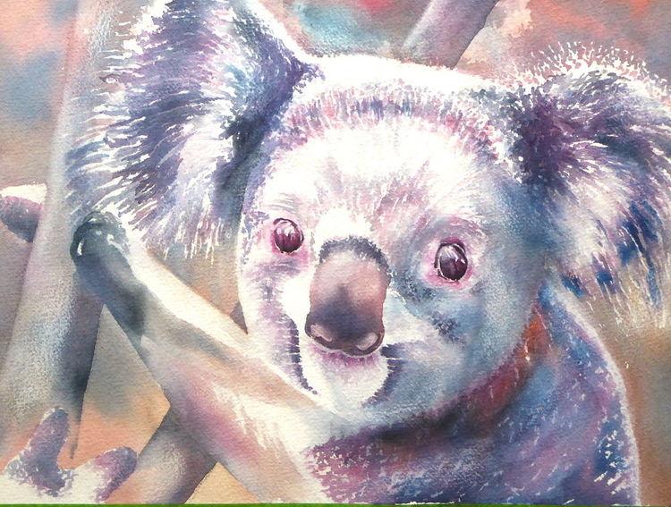Bär, Tiere, Aquarellmalerei, Koala, Aquarell