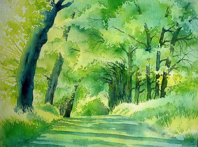 Grün, Aquarellmalerei, Baum, Sommer, Licht, Allee
