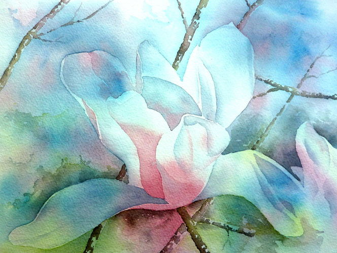 Aquarellmalerei, Blüte, Magnolien, Rot, Frühling, Grün
