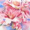 Mandelblüte, Blüte, Aquarellmalerei, Frühling