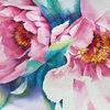 Pfingstrose, Frühling, Blumen, Aquarellmalerei