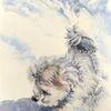 Hundeportrait, Aussie, Aquarellmalerei, Portrait