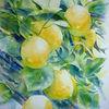Zitrone, Aquarellmalerei, Gelb, Limone
