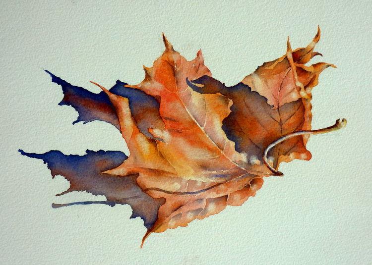 Herbstblätter, Herbst, Aquarellmalerei, Blätter, Aquarell,