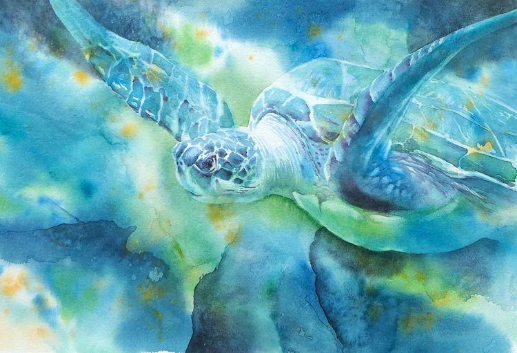 Aquarellmalerei, Schildkröte, Meeresschildkröte, Aquarell, Tiere