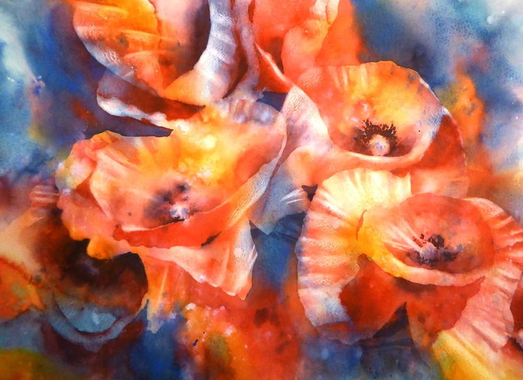 Blumen, Mohnblumen, Aquarellmalerei, Rot, Mohn, Aquarell