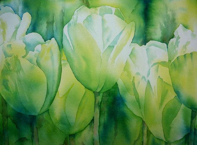 Blumen, Weiß, Aquarellmalerei, Grün, Weiße tulpen, Pflanzen