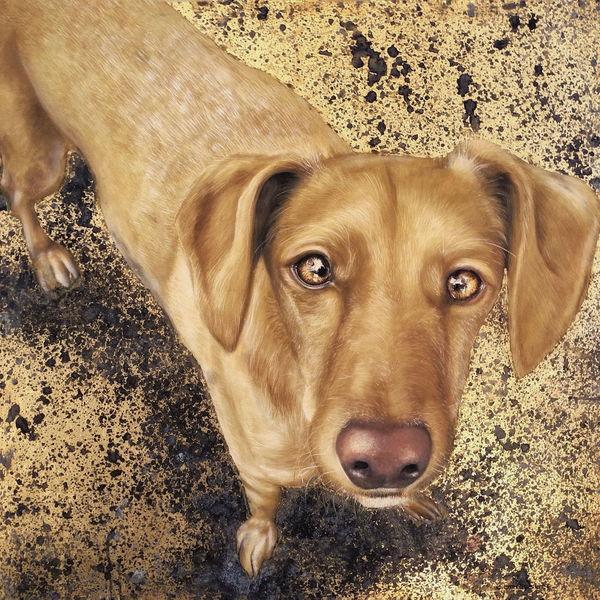 Portrait, Blattgold, Hund, Podenco