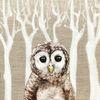 Acrylmalerei, Waldkauz, Eule, Malerei