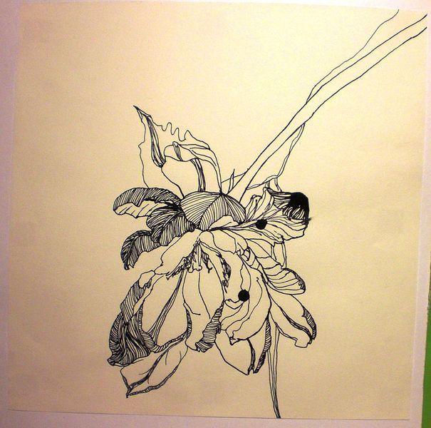 Zeichnungen, Tusche