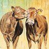 Kuhkuss, Kuh, Bauernhof, Braune kühe