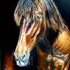Braunes pferd, Pferdeportrait, Pferdeporträt gemalt, Malerei