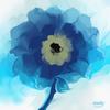Blau, Blumen, Digitale kunst, Digital