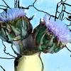 Digitale kunst, Blumen, Digital