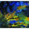Gemälde, Abstrakte malerei, Blau gelb, Korallen 2