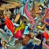 Politik, Digitale kunst, Fotografie, Philosophie