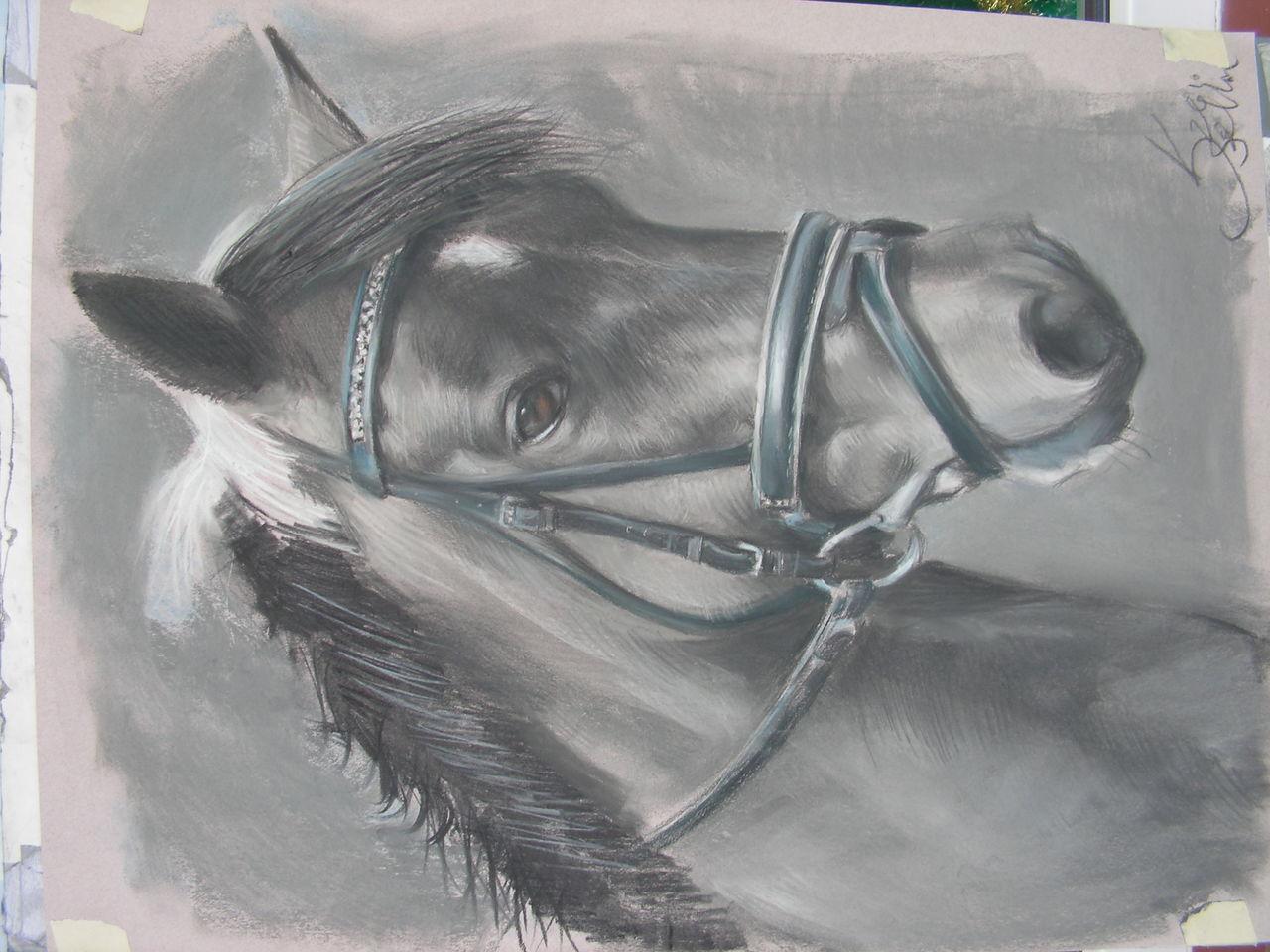 pferde portrait gem lde tierportrait pferde illustration gem lde von janoschlein bei kunstnet. Black Bedroom Furniture Sets. Home Design Ideas