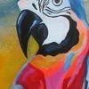 Bunt, Papagei, Schnabel, Malerei