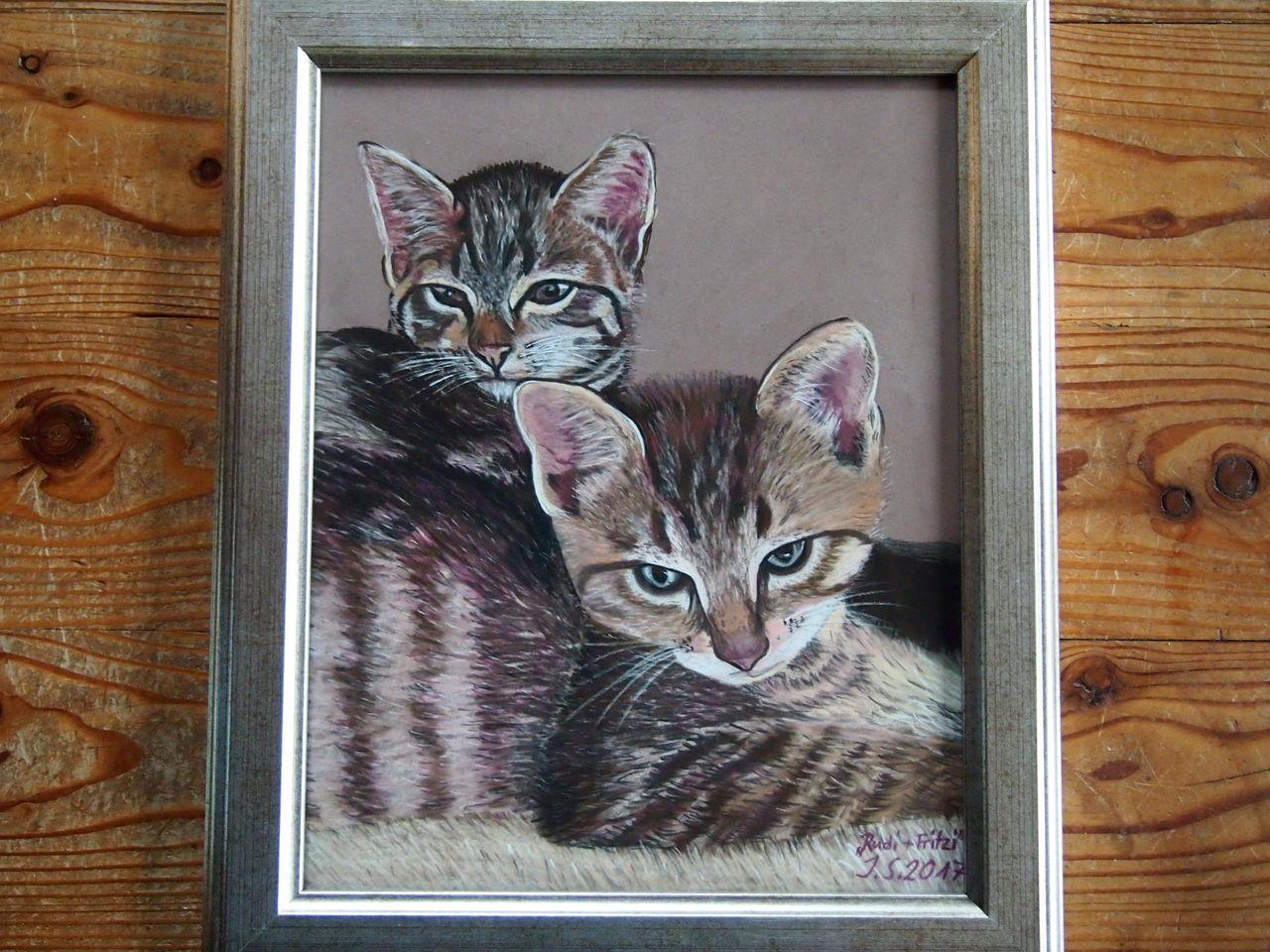 katzen katze katzenk pfe zwei stubentiger malerei von ingrid54 bei kunstnet. Black Bedroom Furniture Sets. Home Design Ideas