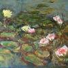 seerosen - see,seerosen,teich,flora,blumen,blüten,malerei,impressionismus,ölmalerei,romantik,natur,nature,flowers,summer, impressionen