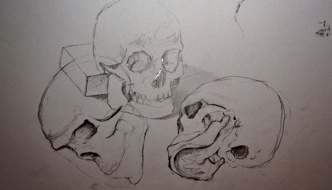 Schedel, Zeichnungen, Natur