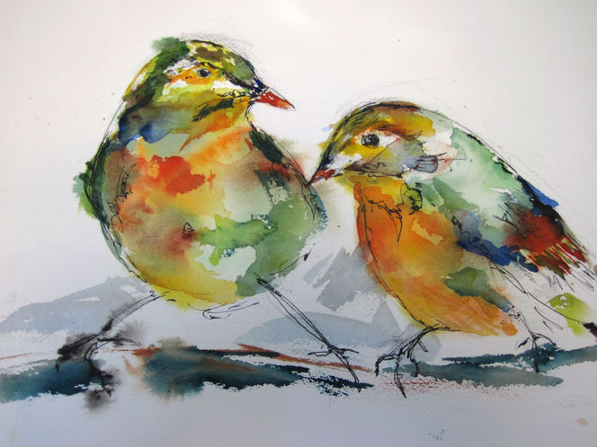 Tusche, Aquarellmalerei, Aquarell, Vogel