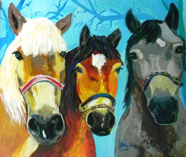 Wildtiere, Tiere, Kinder, Pferde, Rot, Europa