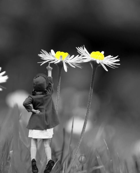 Mädchen, Zeigen, Wiese, Fotografie, Kind, Fotomontage