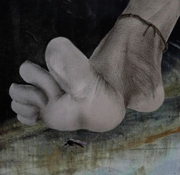 Fußkette, Mücke, Großvater, Fotografie, Töten, Fuß