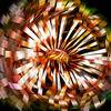 Blumen, Digitale kunst