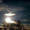 Strauch, Sonne, Himmel, Fotografie