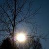 Himmel, Baum, Holz, Sonne