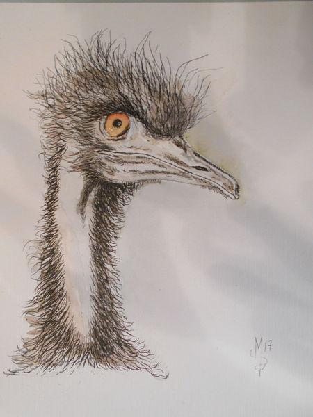 Tribut an annika, Emu, Tierportrait, Zeichnungen, Tribut,