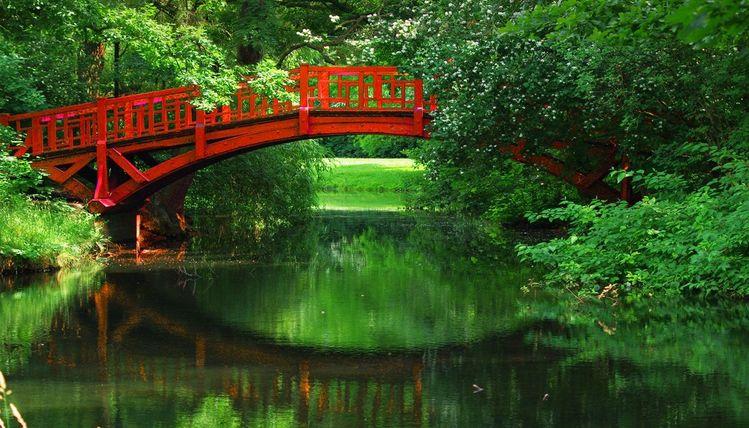 Grün, Fotografie, Sommer, Fluss, Natur, Brücke