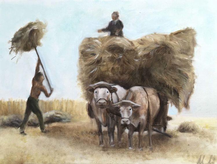 Kuh, Arbeiten, Weizen, Ernte, Bauer, Malerei