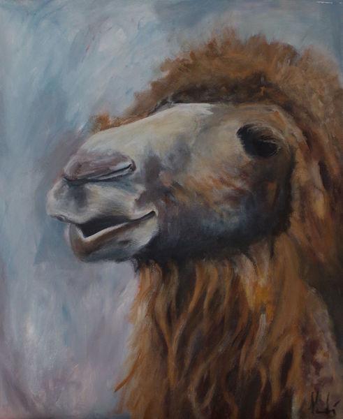 Zoo, Portrait, Tiere, Kamel, Malerei