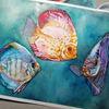Aquarellmalerei, Discus, Fisch, Tiere