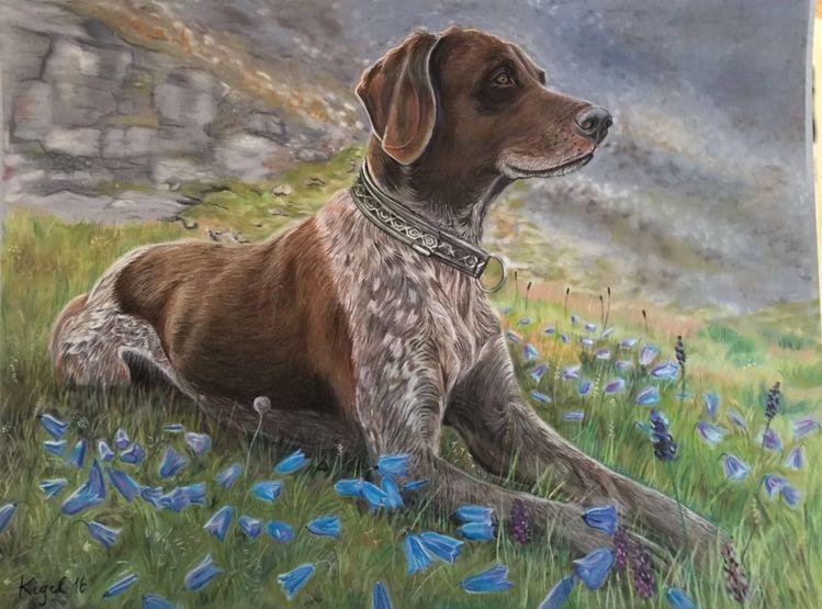 Naturalistisch, Kopf, Pastellmalerei, Kreide, Tiere, Hund