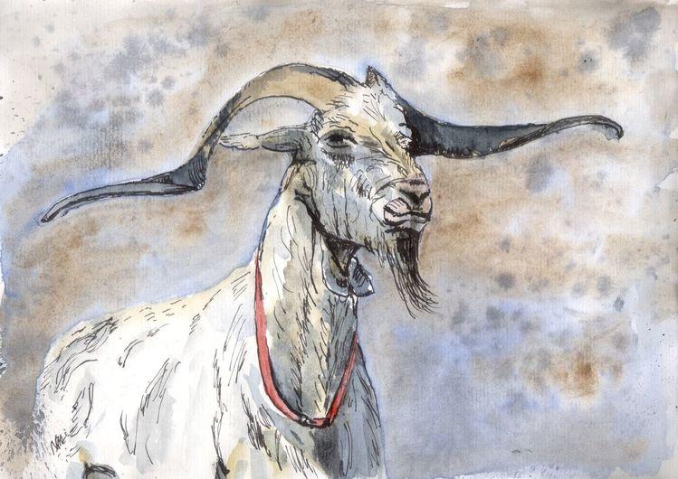 Tiere, Halsband, Lebewesen, Ziegenbock, Horn, Mischtechnik