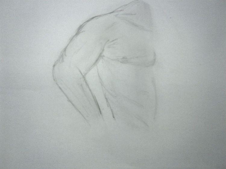 Körper, Zeichnungen