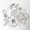Tuschmalerei, Blüte, Granatapfelfrucht, Zeichnungen