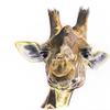 Braun, Giraffe, Lächeln, Buntstiftzeichnung