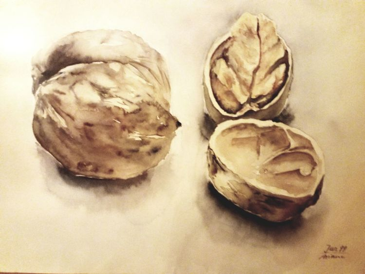 Nüsse, Stillleben, Aquarellmalerei, Aquarell