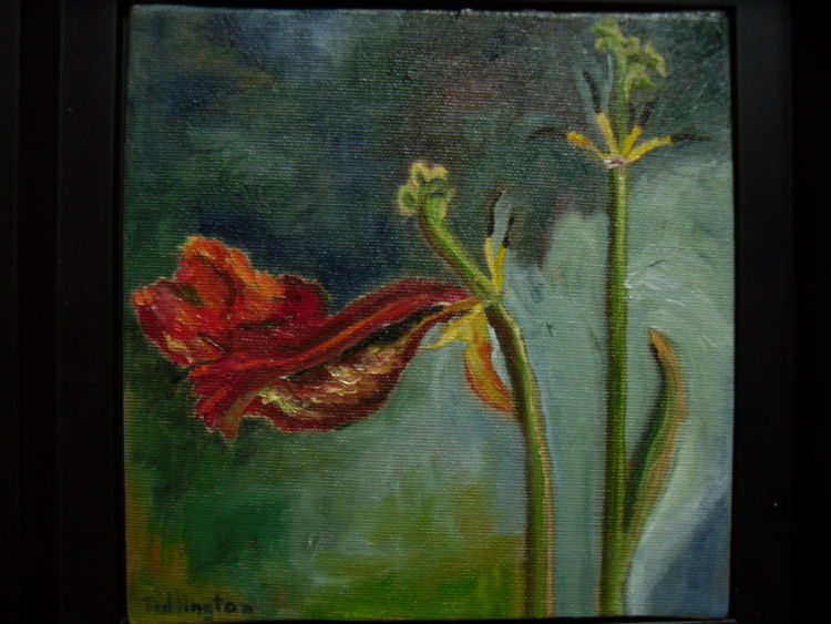 Rot, Pflanzen, Stängel, Blüte, Blätter, Malerei