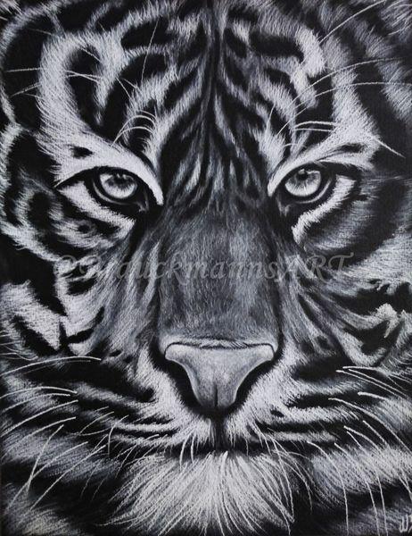 Raubtier, Fell, Tiger, Tiere, Pastellmalerei, Augen