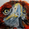 Vogel, L farbe, Rot, Aquarell