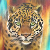 Jaguar, Aerosol, Dschungel, Orange