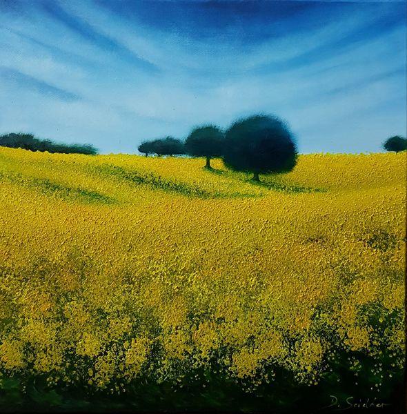 Frühling, Raps, Gelb, Baum, Himmel, Malerei